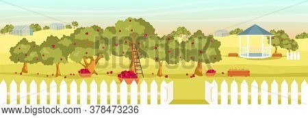 Apple Garden Flat Color Vector Illustration. Empty Orchard 2d Cartoon Landscape With Gazebo And Gree