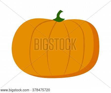 Orange Pumpkin Isolated At White Background. Farm Vegetable, Web Icon, Natural Food. Halloween Veget