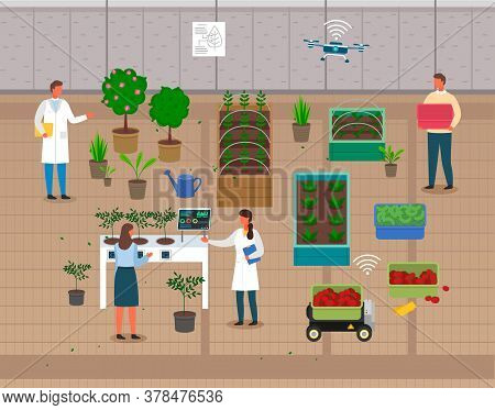 Urban Agriculture. Growers Using Modern Technologies For Urban Agriculture To Control Process Of Gro