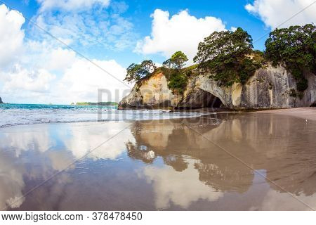 Cathedral Cove on the North Island of New Zealand. Grass and trees grow on picturesque huge rocks. Mirror reflections of clouds in wet sand. The concept of exotic, ecological and photo tourism