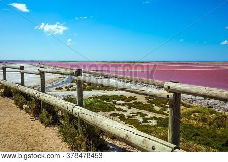 Observation deck. The Mediterranean coast of France, the small area of Camargue. Salt production on the seashore. Pink Salt Water Estuary. The nature reserve includes saltwater and sand dunes