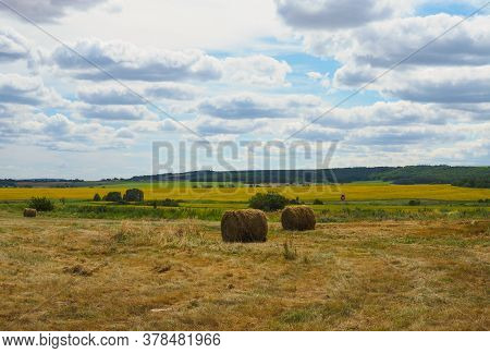 Field With Cut Grass And Hay Bales Rolled, Beautiful Rural Landscape