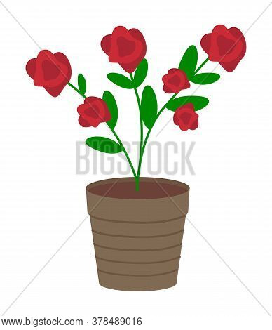 Vector Illustration Of Growing Plant With Flower In Pot Isolated On White Background. Potted Bush Wi