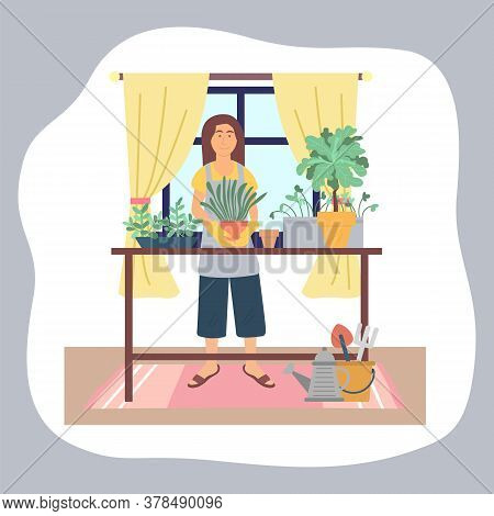 Woman Transplanting Plants At Home. Girl In Rubbery Gloves Enjoy Gardening, Holding Pot With Green P