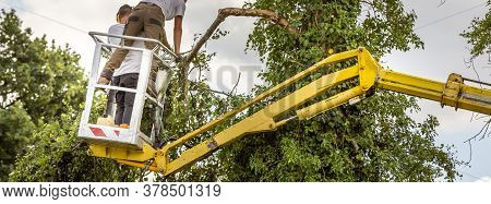 Two Arborist Men In The Air, Cloudy Sky, On Yellow Elevator, Basket With Controls, Cutting Off Dead