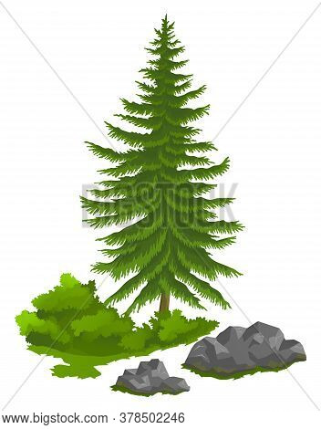 Green Spruce Tree In Flat Design. Evergreen Conifer Tree Conical Shape. Pine Tree Christmas Symbol.