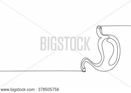 One Continuous Line Drawing Of Anatomical Human Stomach Organ. Trendy Medical Internal Anatomy Conce