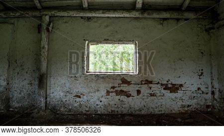 Green Plants Outside Old Shed Abandoned Building Window View From Dark Inner Premises With Peeling W