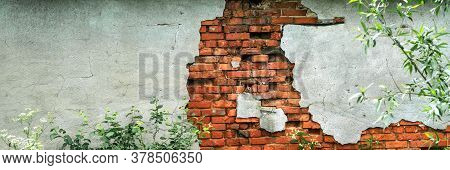 Peeling Brown Brick Wall Piece Of Abandoned Former Cowshed Building With Green Plants On Foreground