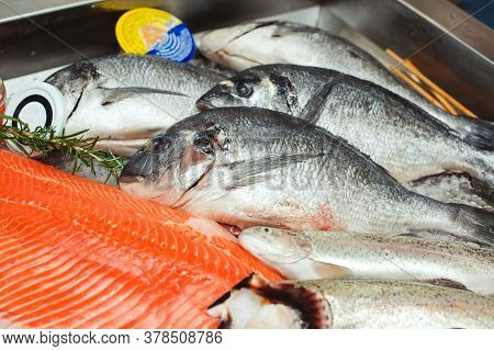 Fish Food At Shop, Close Up. Raw Fish Ready For Sale In The Supermarket. Showcase With Chilled Red F