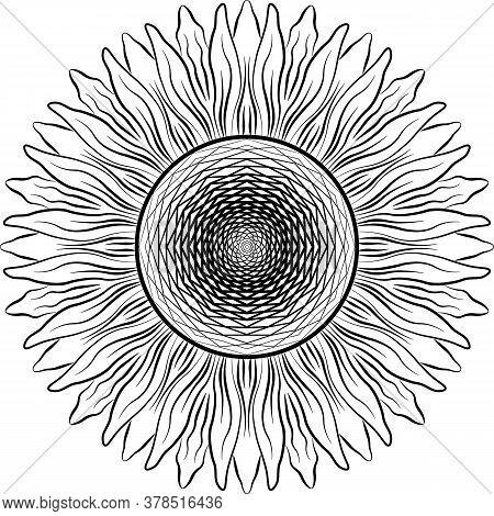 Vector Mandala Sunflower. Black On White Background Decorative Element. Circular Geometric Abstract