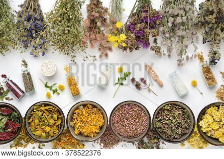 Bottles Of Homeopathic Globules And Dry Medicinal Plants. Bowls Of Dry Medicinal Herbs And Healing P