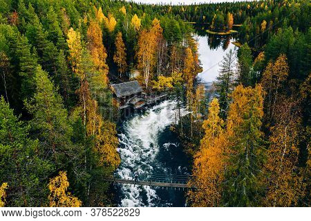 Aerial View Of Fast And Wooden Cabin In Beautiful Orange And Red Autumn Forest. Oulanka National Par