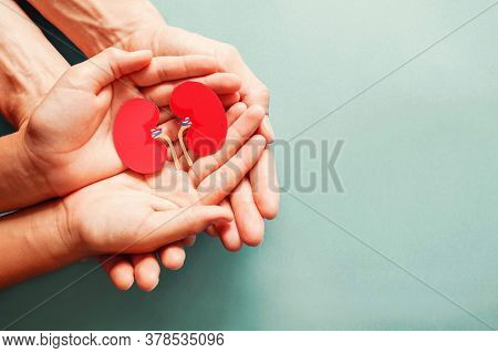 Adult and child holding kidney shaped paper on textured blue background, world kidney day, national organ donor day, charity donation concept