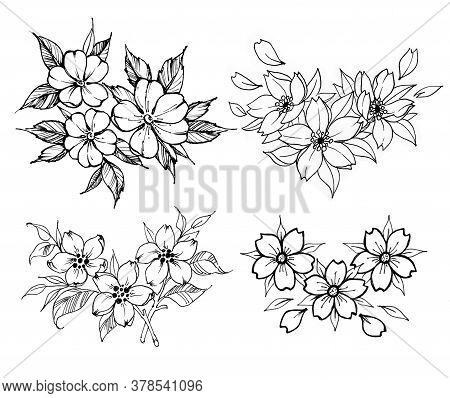 Blooming Flower Tattoos. Collection Of Elegant Tattoos. Branch Of Blooming Rose, Plum, Branch Of Sak