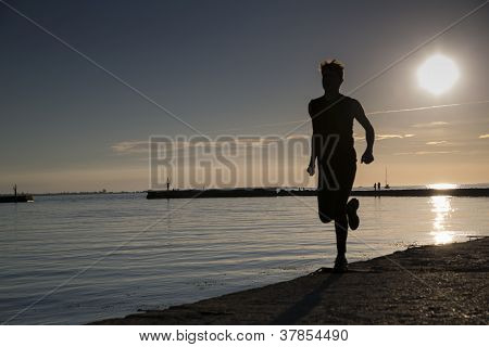 Sportsman heating its legs on beach late evening poster