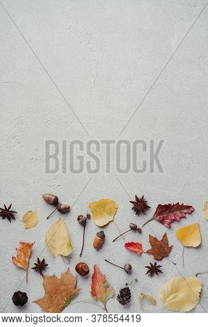 Autumn Season Abstract Background. Fall Yellow Leaves Border On Stone Surface. Thanksgiving Day, Sea