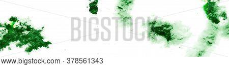 Spring White Background. Garden Organic Grunge. Artistic Fruit Leaves. Artistic Organic Grunge. Gard