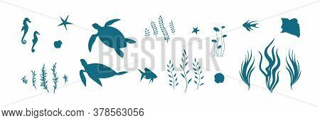 Vector Set With Underwater Animal Illustration With Turtles, Fish, Seahorses And Algae. Blue Silhoue