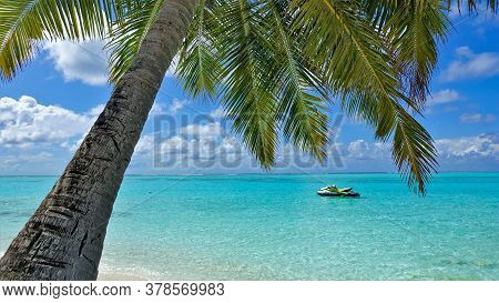 Paradise In The Maldives. A Palm Tree Bent Over The Aquamarine Ocean. Carved Green Leaves Against Th
