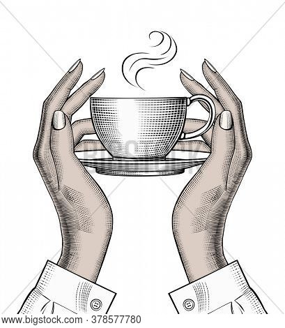 Woman's hands holding a Coffee cup. Favorite morning coffee mug. Coffee concept. Vintage stylized drawing.