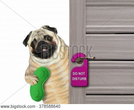 The Pug Dog With A Green Sleep Mask Closes The Door Of His Hotel Room.  A Purple Sign With Text Do N