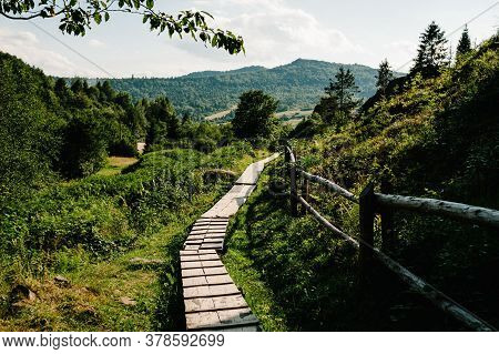 The Wooden Path In The Forest Leads To The Big Mountains. Journey Ahead. Quiet Lane. Wood Plank Walk