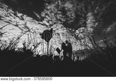 Side View Of A Romantic Man And Woman Walking Away On Field Grass, Nature Enjoying Stunning Sunset.