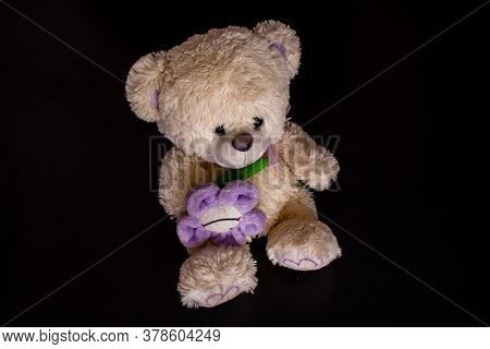 Fluffy Teddy Bear Toy On The Black Background. Isolated