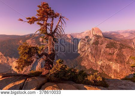Sunset Panorama With Tree At Glacier Point In Yosemite National Park, California, United States. Vie