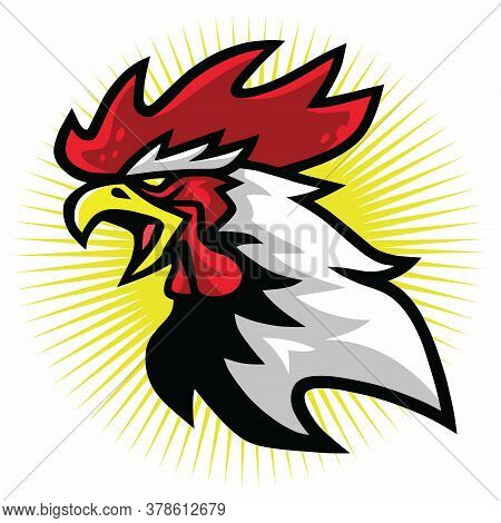 Angry Fierce Rooster Fighting Sports Mascot Logo Premium Design Vector Illustration