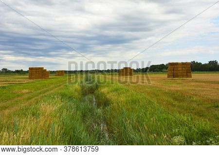 Square Haystacks In A Square Arrangement On The North East Italian Wetlands Near Marina Julia, Friul