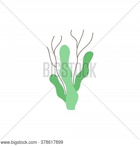 Seaweed Cute Vector Illustration. Hand Drawn Ocean, Marine, Sea Green Seaweed. Isolated.