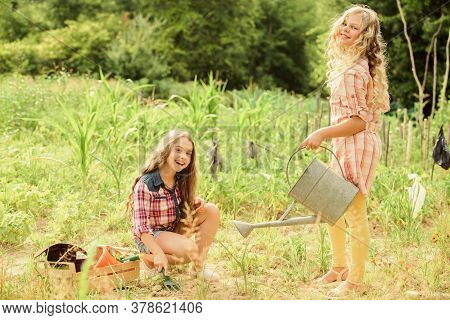 Garden And Beds. Rustic Children Working In Garden. Planting And Watering. Girls Planting Plants. Ag