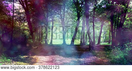 Magical Fairy Forest With Ethereal Light - Surreal Fantasy Woodland Copse With Ethereal Lighting On