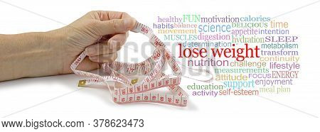 Words Associated With Losing Weight Tag Cloud - Female Hand Holding A Measuring Tape In One Hand Bes