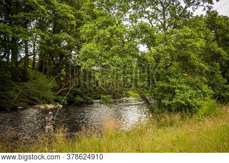 A Fisherman Spey Casting For Salmon Using A Fly Rod On The River Minnoch, Newton Stewart, Galloway,