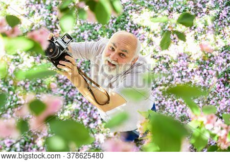 Old Happy Man Looking Upwards At Tree. Senior Man Holding Professional Camera. Education For Elderly