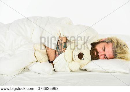 Cute Teddy Bear Toy. Create Sleep Positive Bedroom Environment. Playful Adult. Cute And Romantic. Be