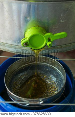Pumping Honey With A Honey Extractor Close-up. Apiculture.