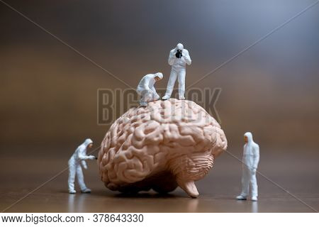 Miniature People , Scientist Observing And Discussing About Human Brain