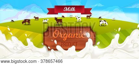 Milk Farm Landscape With Cows, Red Ribbon, Green Hills, Wooden Signboard, Clouds. Agriculture Farmin