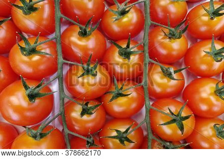 Tomatoes With Green Sepals. View From Above. Supermarket. Box.