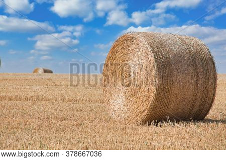Bales On The Field, Big Yellow Round.
