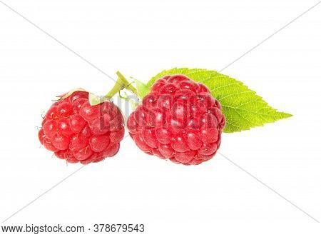Raspberry With Leaves Isolated On White Background. Ripe Raspberries With Raspberry Leaf.