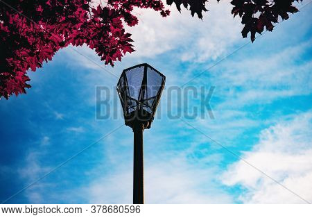 Lantern Against The Background Of The Evening Sky And Tree Foliage. A Fragment Of The Metal Base Of