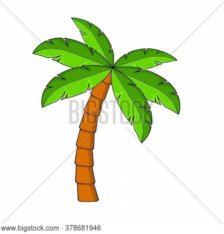 Palm Tree Cartoon Isolated On White. Single Palm Clipart. Template For Poster Or Postcard. Graphic E