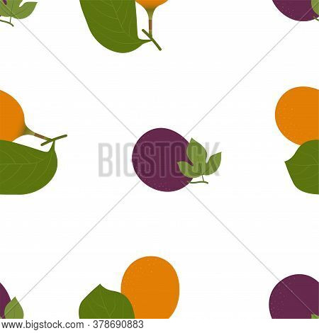 Voavanga And Passion Fruit. Seamless Vector Patterns On White Background