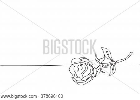 Single Continuous Line Drawing Of Beautiful Fresh Romantic Rose Flower. Dynamic Greeting Card, Invit