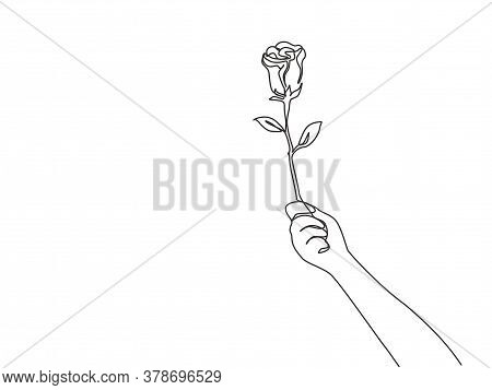 One Single Line Drawing Of Hand Holding Fresh Romantic Beautiful Rose Flower. Greeting Card, Invitat